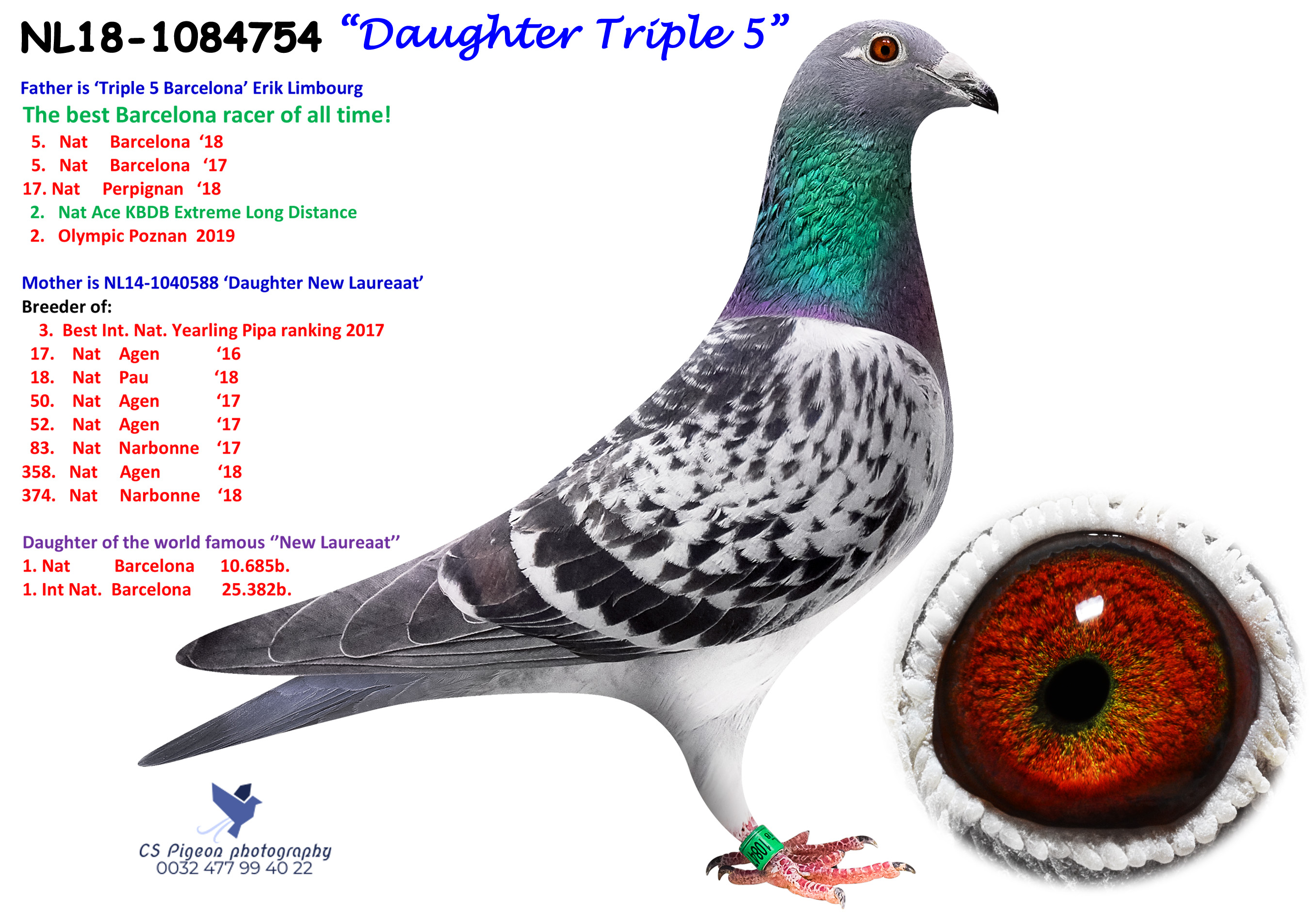 Daughter Triple 5