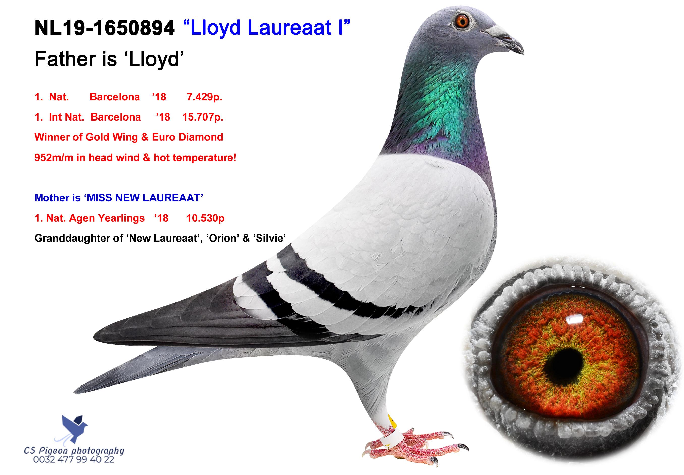 Lloyd Laureaat I